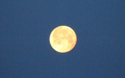 Älskade månen
