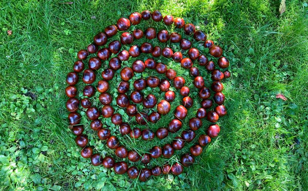 livets spiral