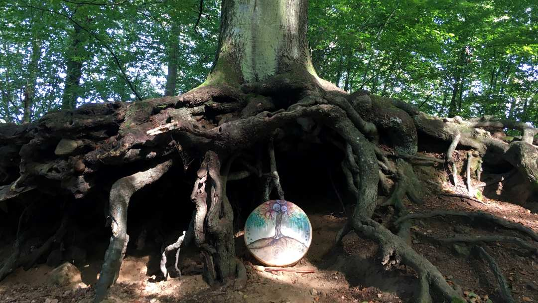 trumträd